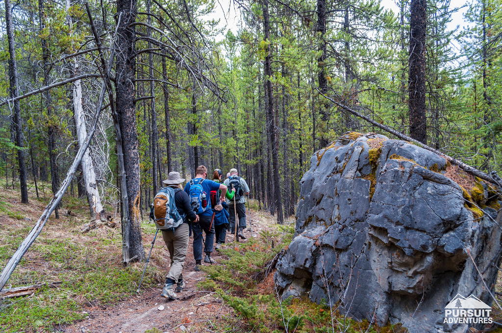 Tour Highlights: Coral Creek Canyon Hike on May 6, 2017