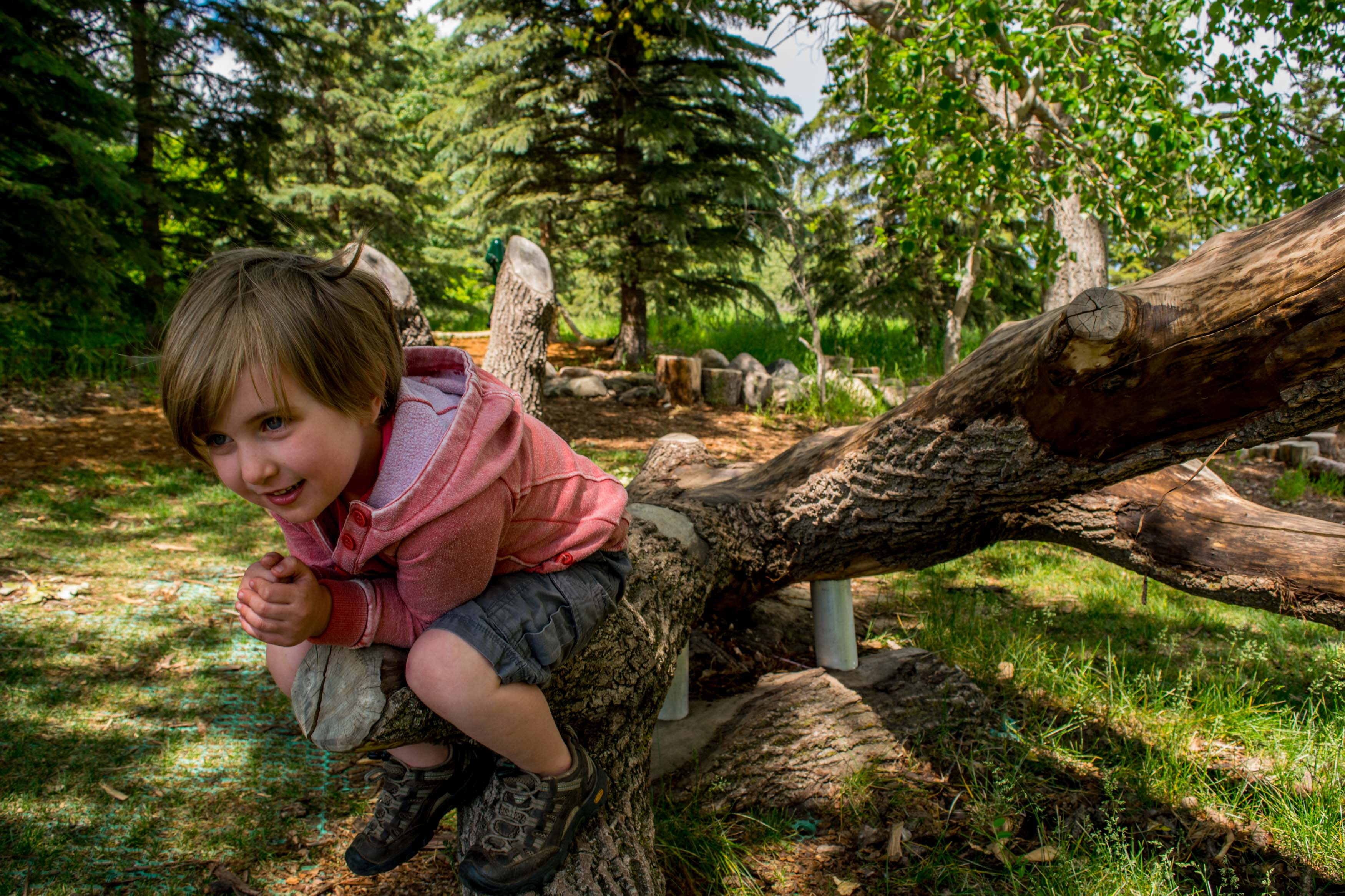 Nature Playground at the Kerry Wood Nature Centre