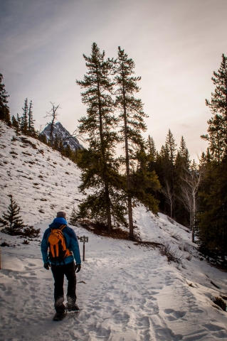 Siffleur Falls Winter Hike